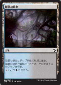 画像1: 陰鬱な僻地(日本語版・通常)