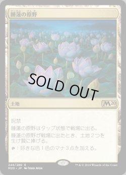 画像1: 睡蓮の原野(日本語版・FOIL)