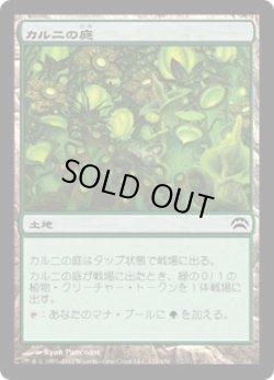 画像1: カルニの庭(日本語版・通常)